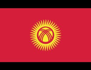 iconfinder_144_Ensign_Flag_Nation_kyrgyzstan_2634334
