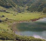 Didi Tobavarchkhili jezioro