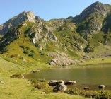 Didi Tobavarchkhili Lake